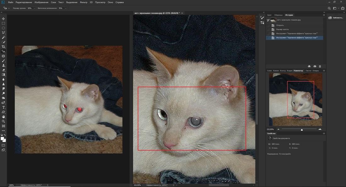 Применение инструмента Красных глаз в Adobe Photoshop