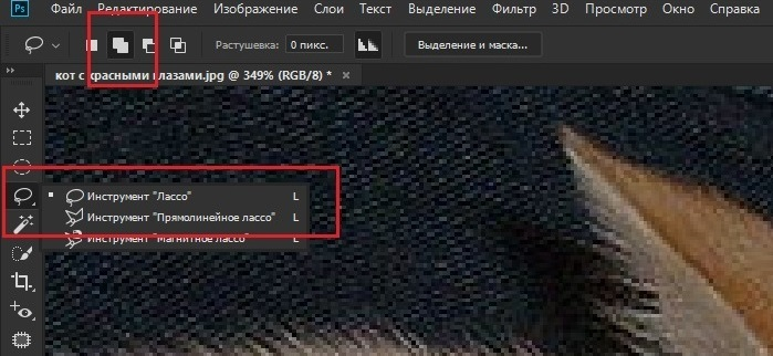 Инструмент Лассо в Adobe Photoshop
