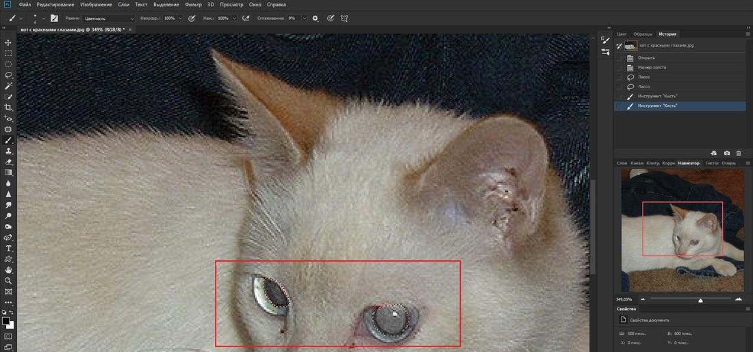 Устранение эффекта красных глаз при помощи кисти в Adobe Photoshop