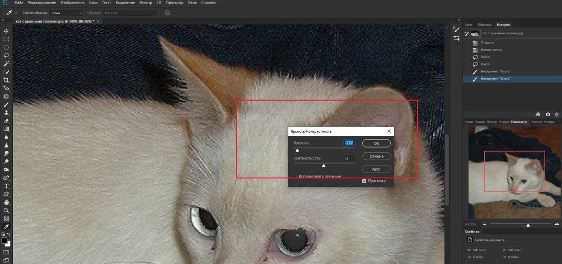 Изменение яркости и контрастности зрачка в Adobe Photoshop