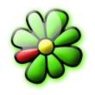 Защищаем свой любимый номер ICQ от «угона»