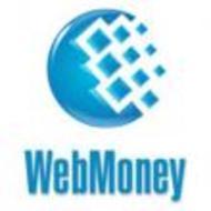 WebMoney Keeper Mini - плюсы и минусы