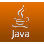 Языку Java исполнилось 20 лет