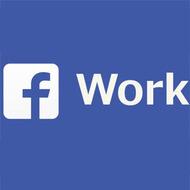Facebook запустит профессиональную соцсеть по типу LinkedIn