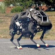 Один из директоров Google надеется на скорый приход роботов-ассистентов